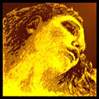 Evah Pirazzi Gold Geige Satz mit G Gold