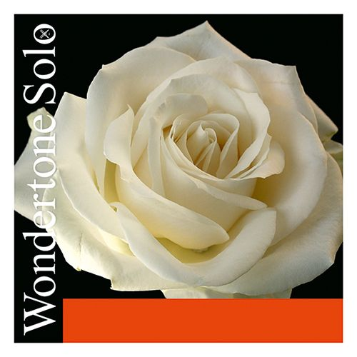 Pirastro Wondertone Solo Geige Satz mit A Alu