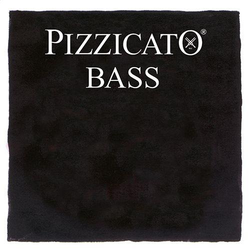 Kontrabass Pizzicato Satz Orchestra